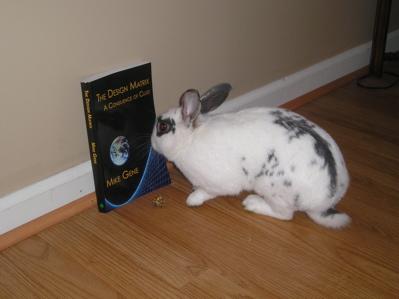 Bunny and the Matrix